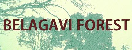 Belgavi Forest